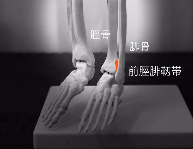 前脛腓靭帯