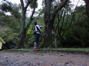 木に寄りかかる