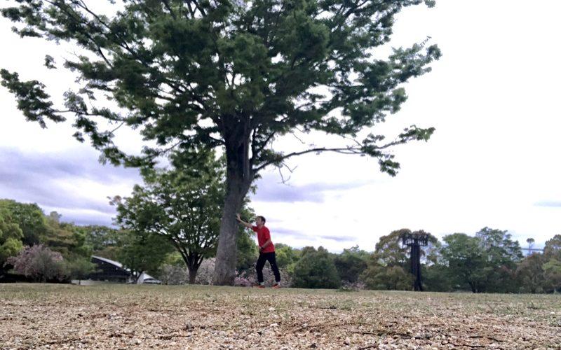 木の下で足を休める